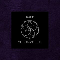 The Invisible by Kalt